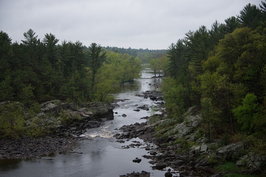 Black River flowing through state forest lands