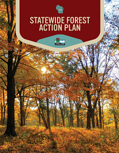 2020 Statewide Forestry Action Plan