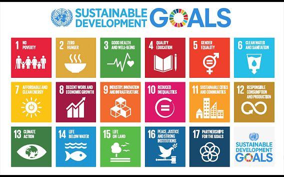 SDGsForWiden.jpeg