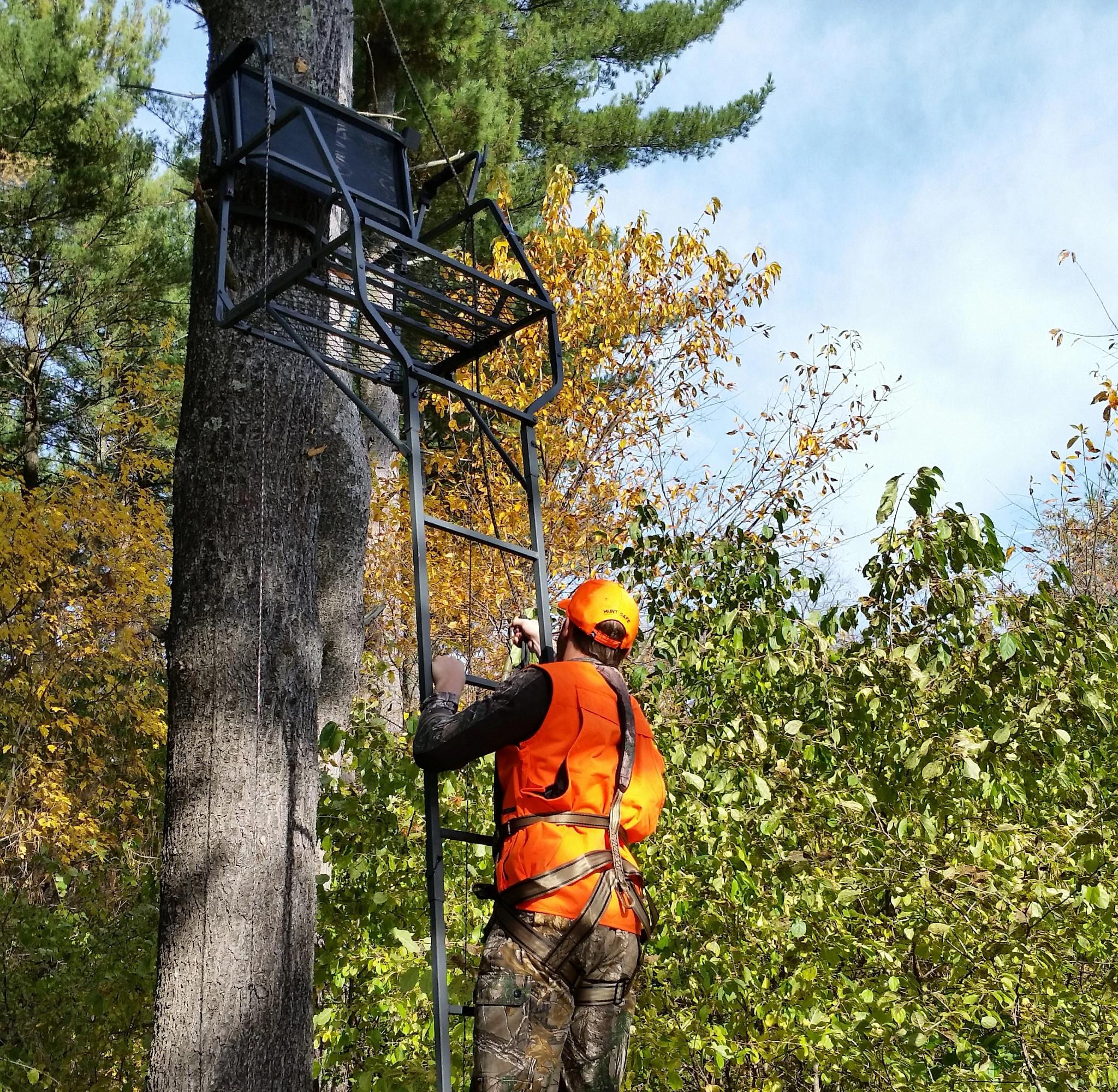 Hunter wearing a full-body harness climbs a treestand