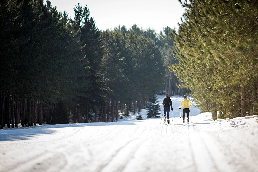 cross-country skiiers on snow trails