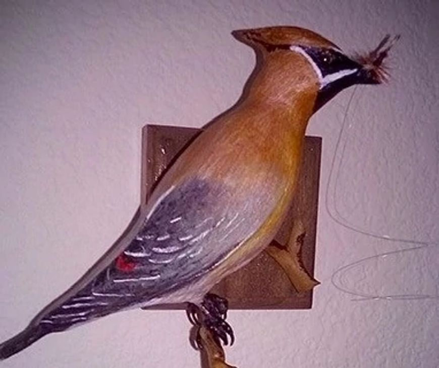 Wood carving of cedar waxwing with fly in its mouth