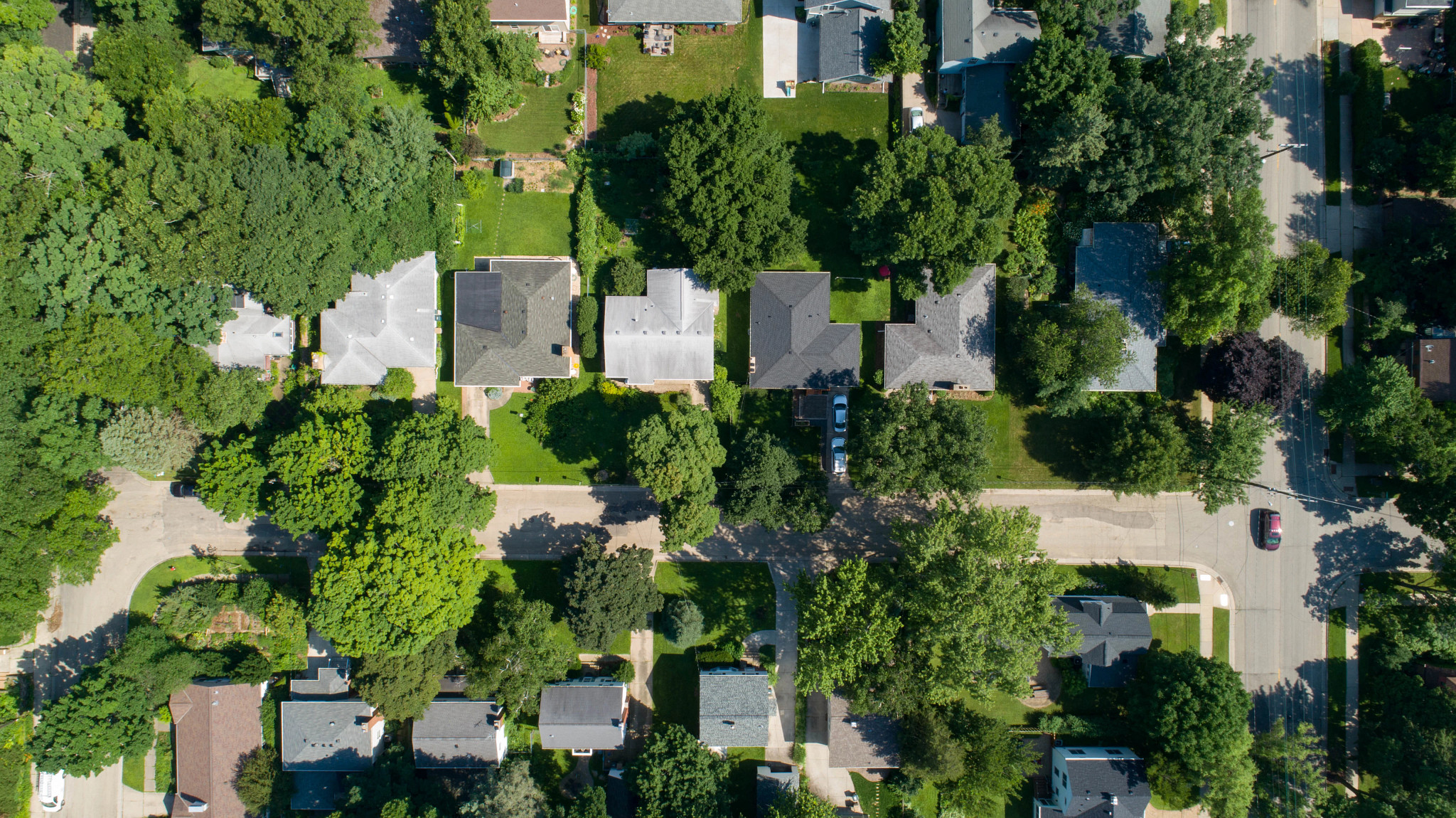 An aerial video of houses surrounded by trees in summer.