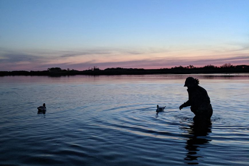 silhouette of woman placing duck decoys on marsh