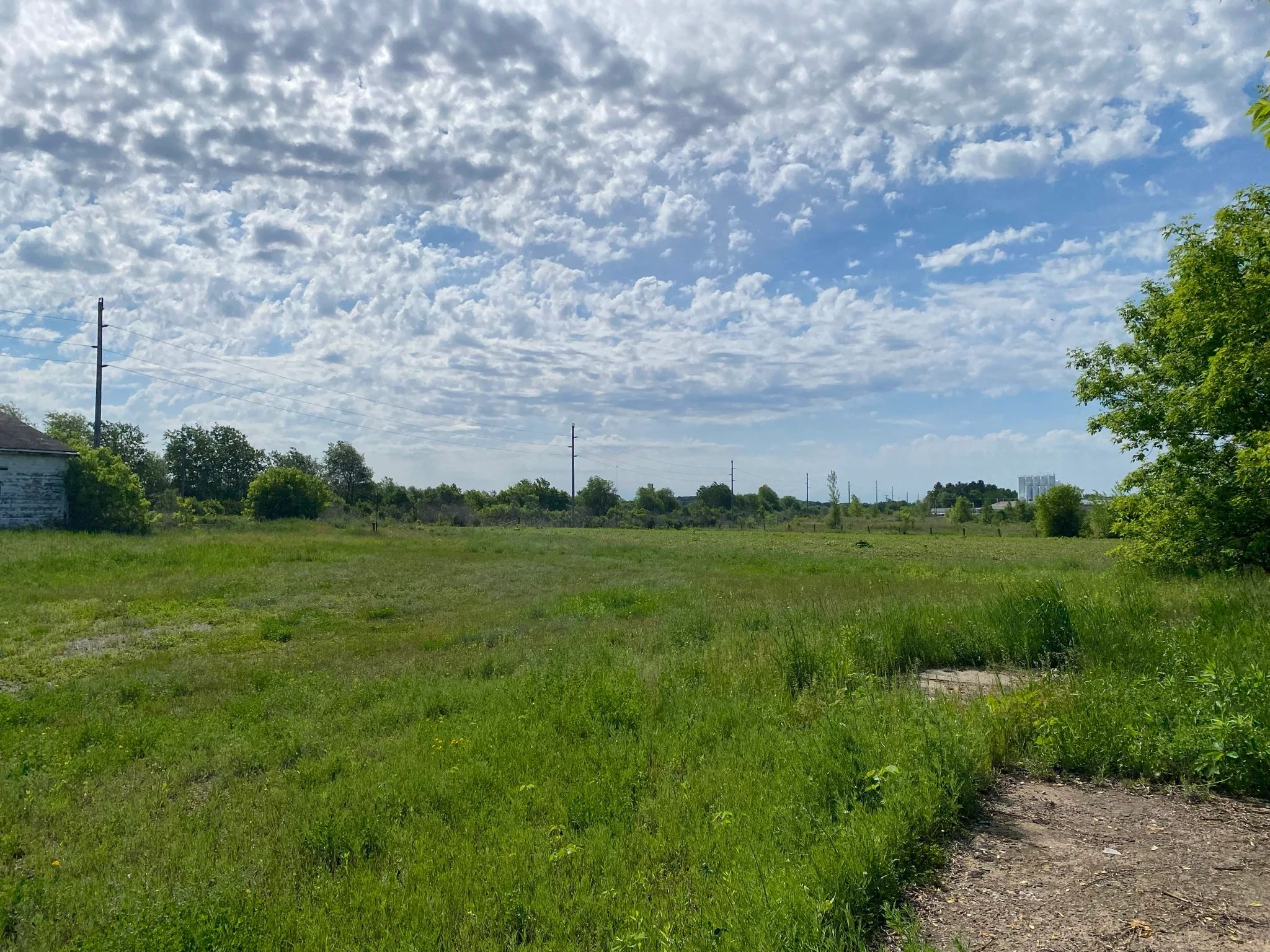 An image of a field in the City of Bloomer.