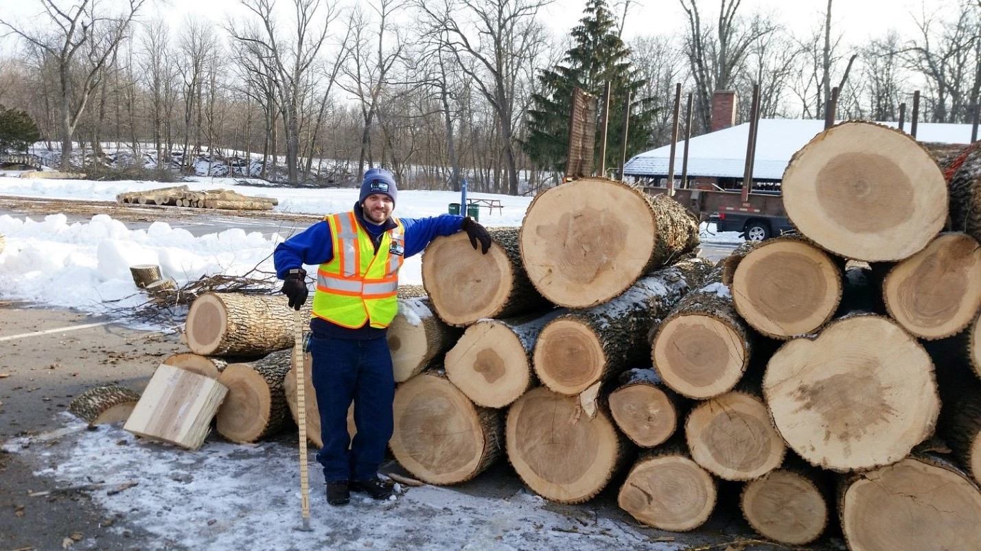 a DNR forest products specialist is scaling logs