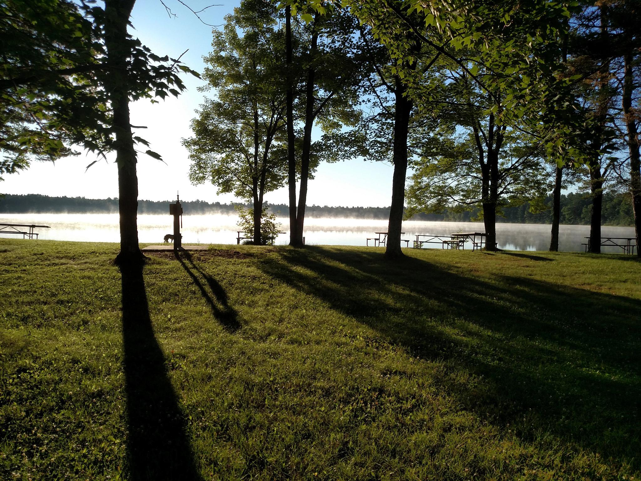 a foggy sunrise across a grassy park and shoreline