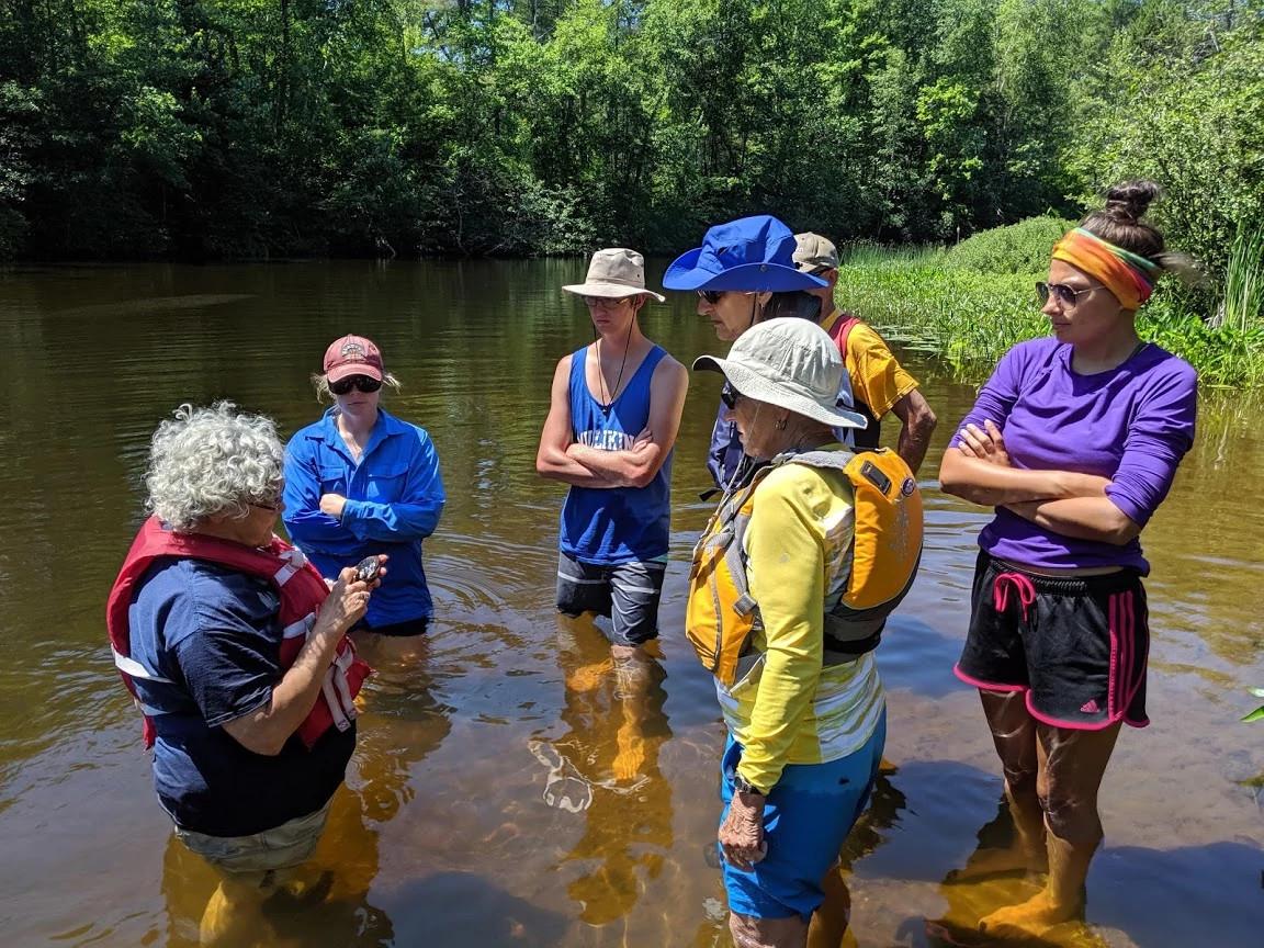 a group of volunteers standing in knee deep water examining a mussel