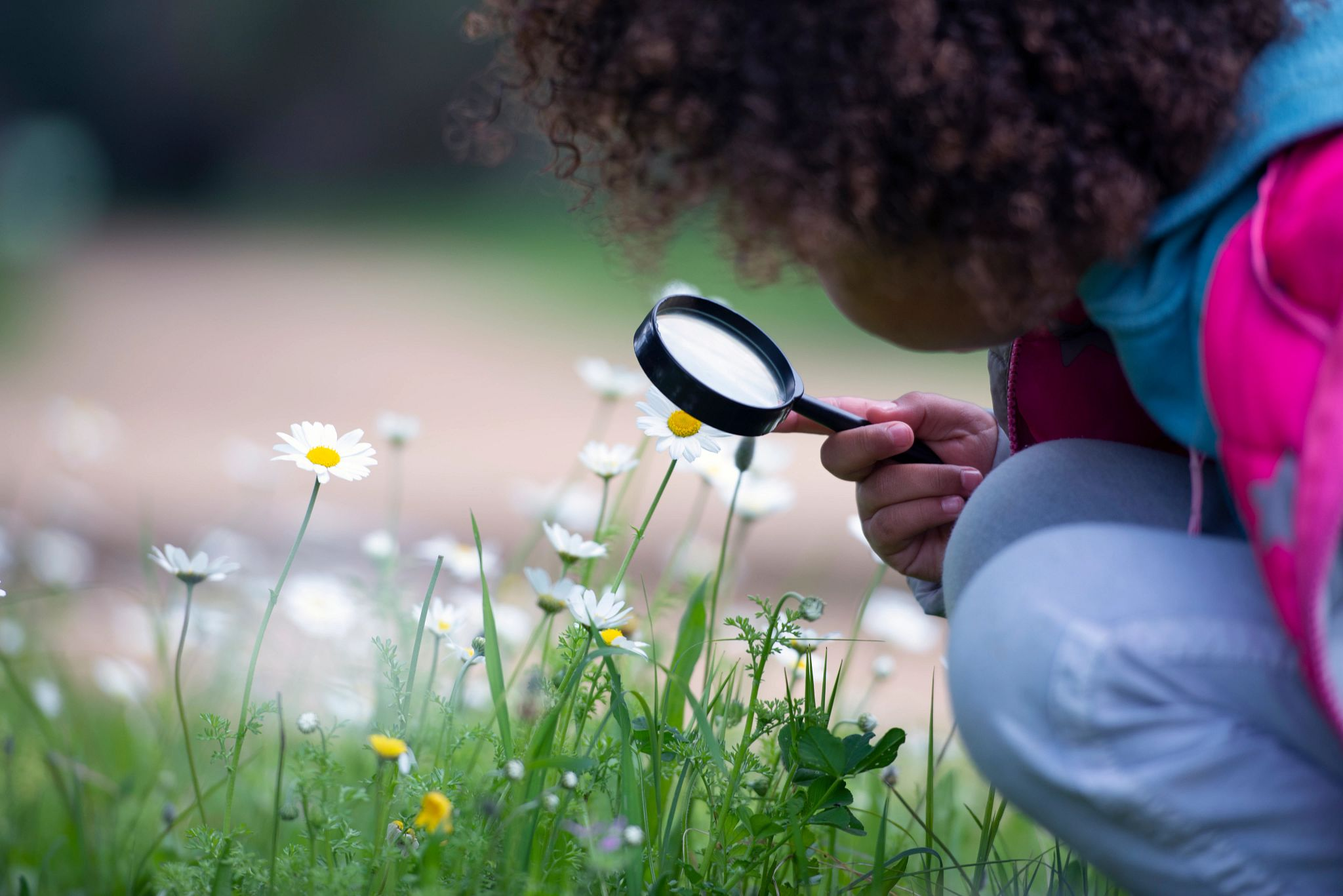 A young girl examining flowers.