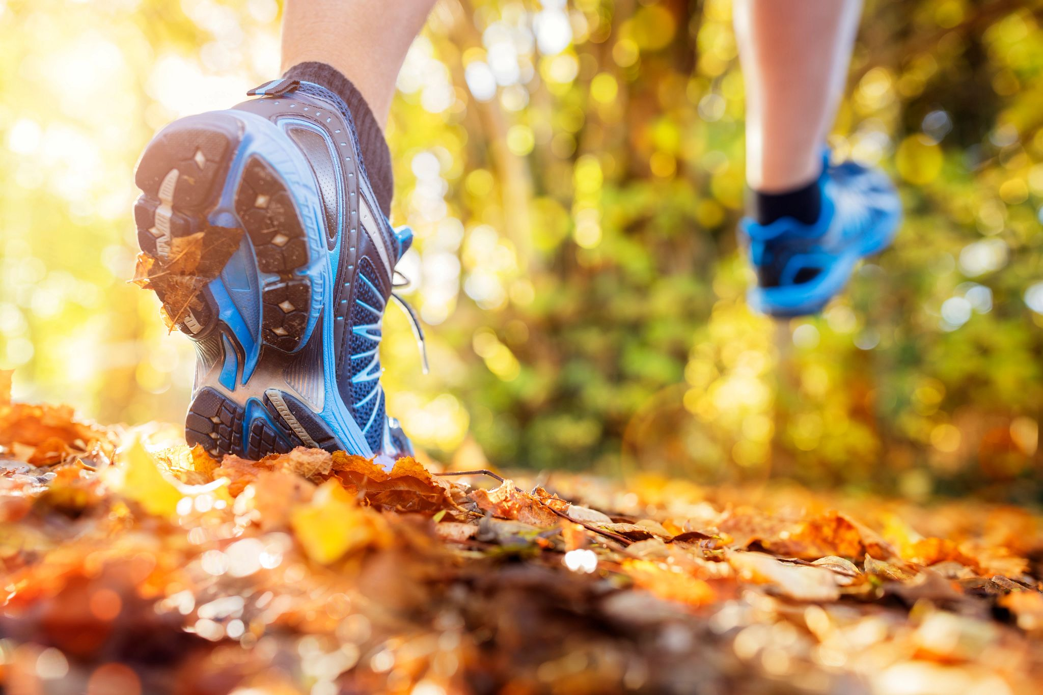 An image of a runner's feet as they dash through a trail full of leaves.