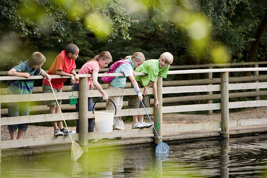 Children-fishing-79337358_5700x3800.jpeg