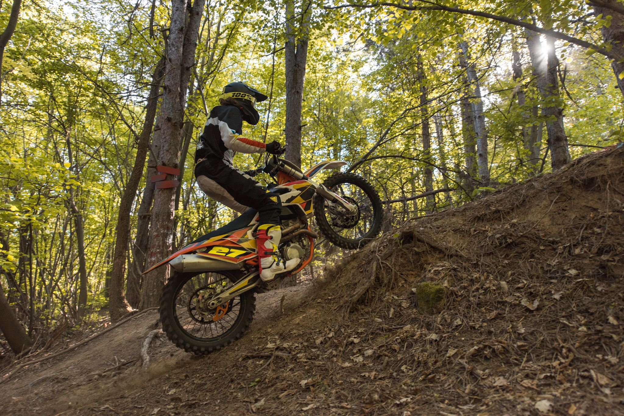 An image of a person riding on a dirt bike in the forest.